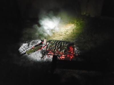 Sardientjes op de barbecue