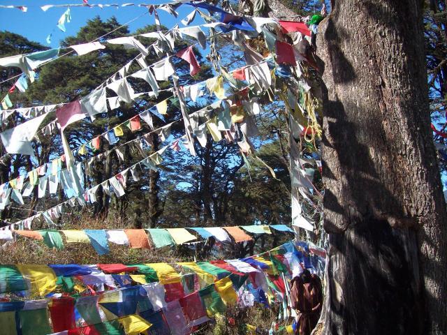 images/bhutan_1330.jpg