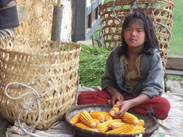 Meisje met maiskolven